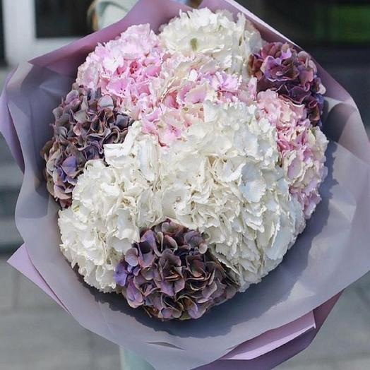 Шикарный букет гортензий: букеты цветов на заказ Flowwow