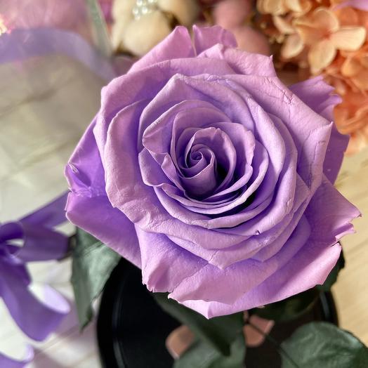 Стабилизированая Роза в колбе