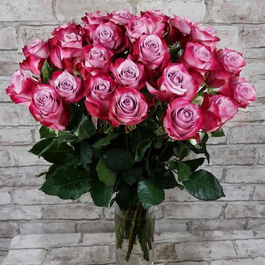31 Роза Дип Перпл 60 см