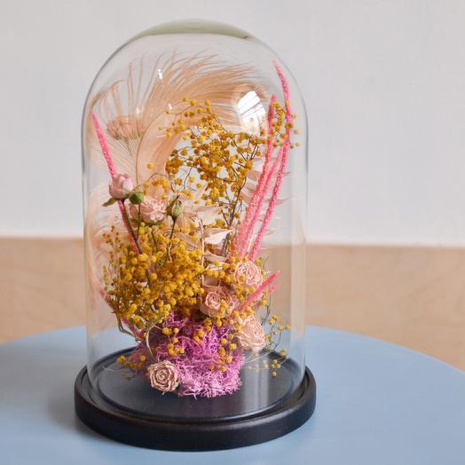 Клош с сухоцветами