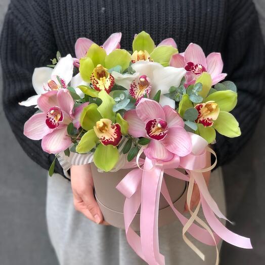 Цилиндр с орхидеями микс