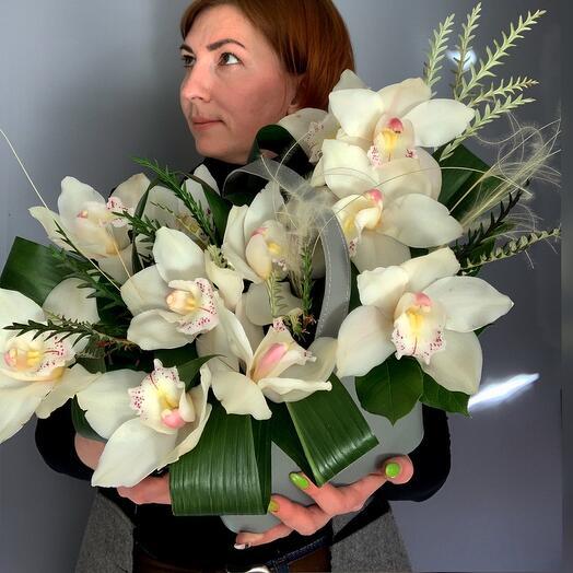 Царство орхидей
