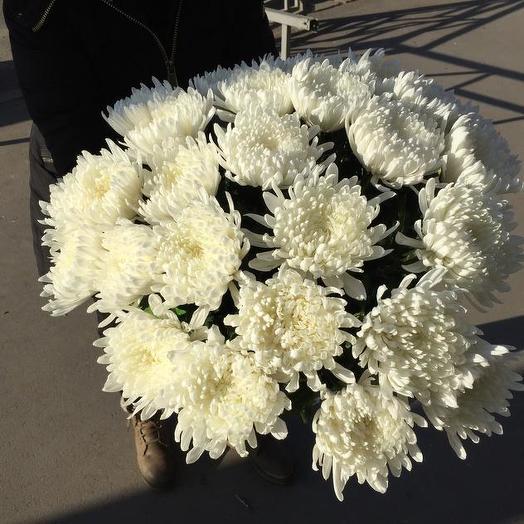 Букет из 21 белой хризантемы одноголовой: букеты цветов на заказ Flowwow