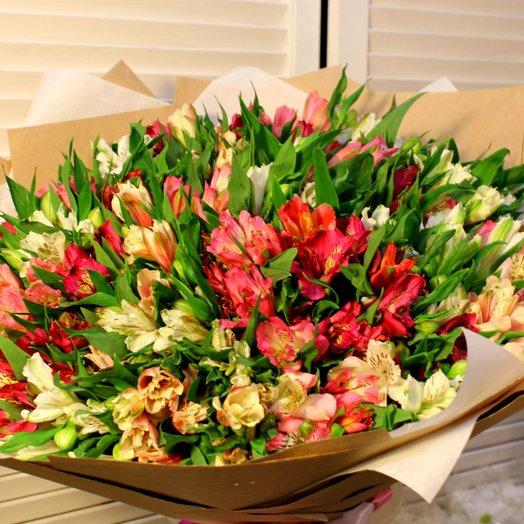 Альстромерия 77: букеты цветов на заказ Flowwow