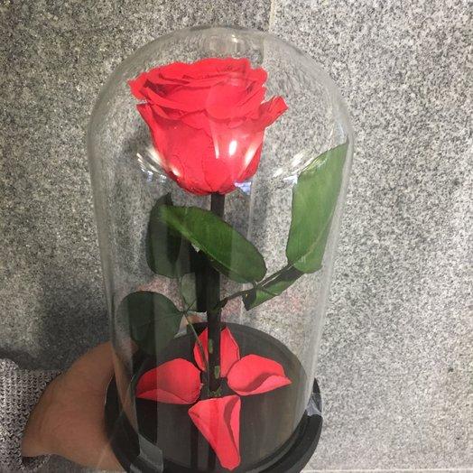 Red Faction: букеты цветов на заказ Flowwow