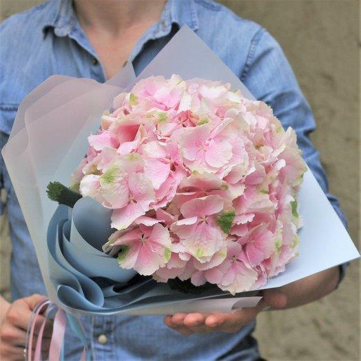Облачко из гортензии: букеты цветов на заказ Flowwow