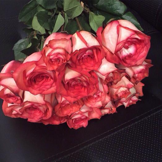 """""""Эквадор 19"""": букеты цветов на заказ Flowwow"""