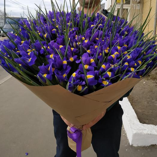 Любовь к 151 Ирисам: букеты цветов на заказ Flowwow