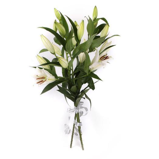 3 лилии белая красавица