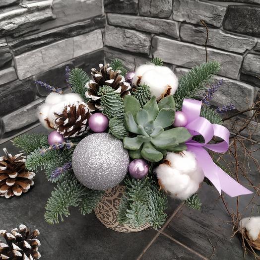 Зимняя композиция с эхеверией: букеты цветов на заказ Flowwow