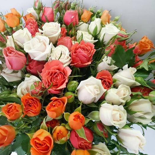Любителям кустовой Розы