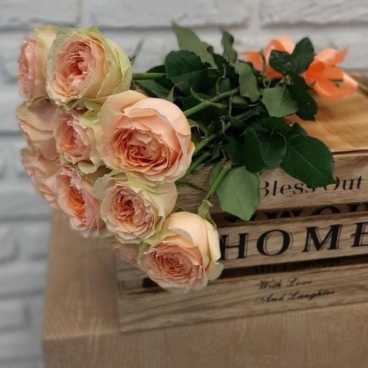 """""""НК"""" 11 пионовидных кремовых роз"""