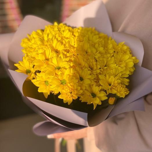 Хризантема кустовая 🥰