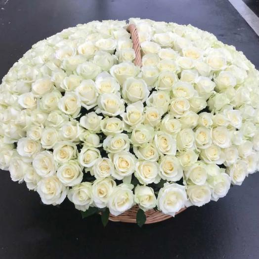 Корзина из 201 белой розы