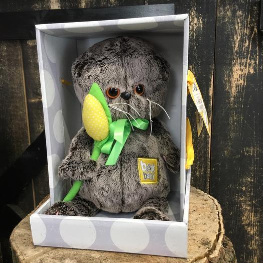 Кот Басик Бейби с жёлтым тюльпаном