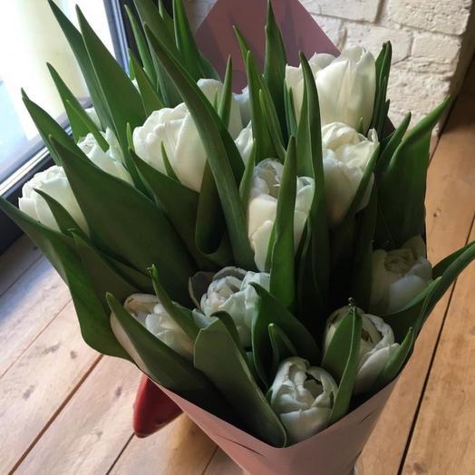 Тюльпан 8 Марта