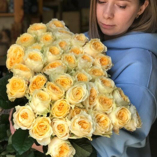 Пиновидная роза