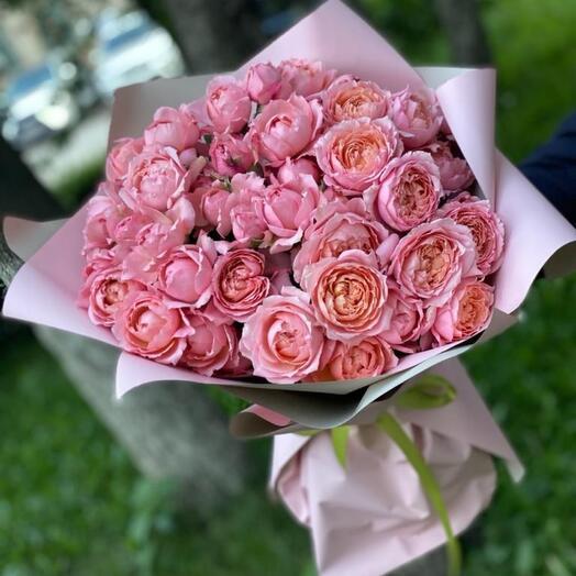 Роза пион Премиум