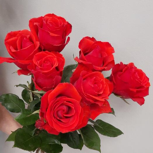 7 роз под ленту