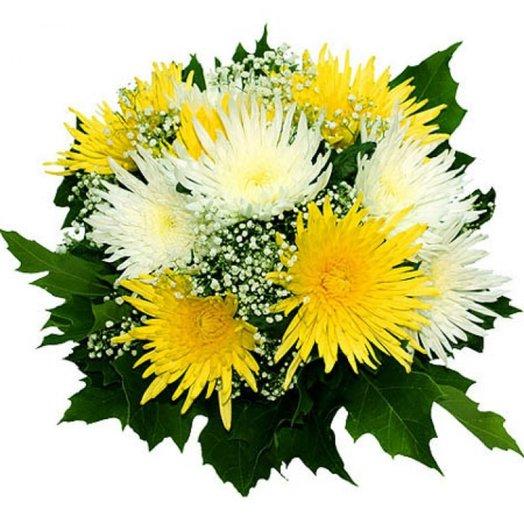 """Букет из хризантем """"Осенние звезды"""": букеты цветов на заказ Flowwow"""