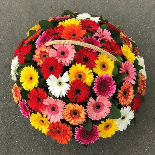Корзины с цветами . Герберы 47 шт N108: букеты цветов на заказ Flowwow