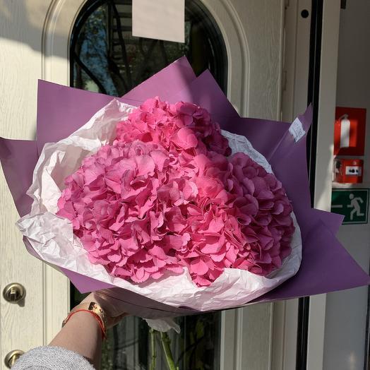 Малиновая гортензия: букеты цветов на заказ Flowwow