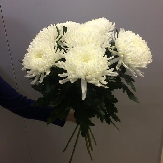 Букет из одноголовых белых  хризантем