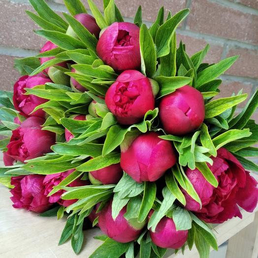 Букет из  19 пионов: букеты цветов на заказ Flowwow
