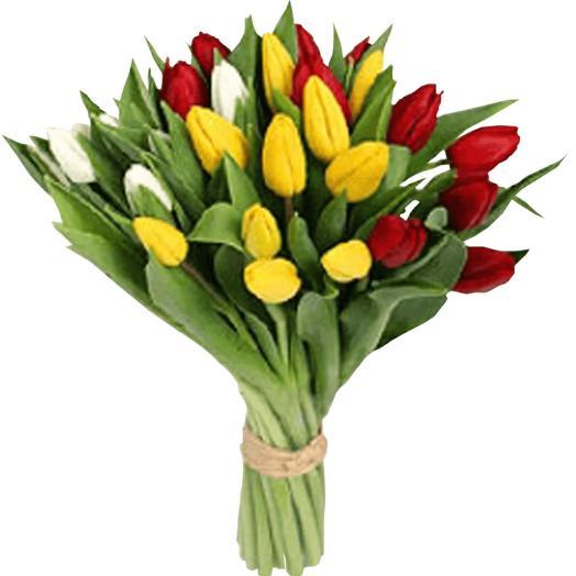 Милые тюльпаны Премиум класса