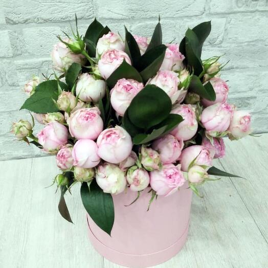 Garden Rose Mix