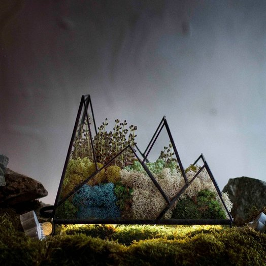 Геометрический флорариум с подсветкой MOUNTAINS
