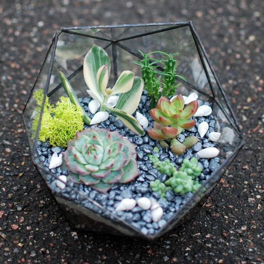 Каменный цветок: букеты цветов на заказ Flowwow