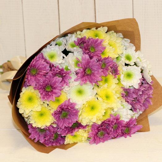 """15 разноцветных хризантем """"1 Сентября"""""""