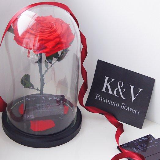 Красная Роза в Колбе KING: букеты цветов на заказ Flowwow