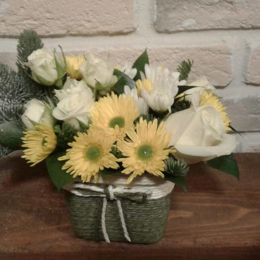 Яркое зимнее солнце: букеты цветов на заказ Flowwow
