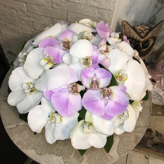Шикарная коробочка из необыкновенной орхидеи для шикарной дамы: букеты цветов на заказ Flowwow
