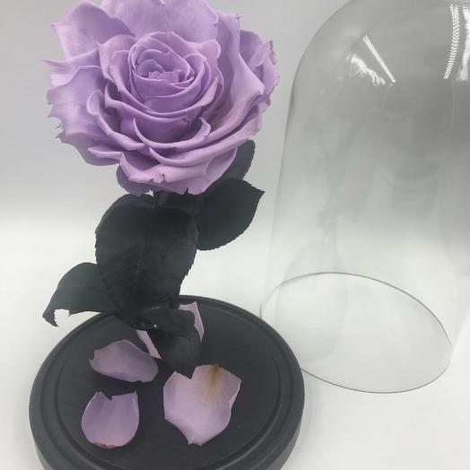 Светло-сиреневая роза в колбе KING: букеты цветов на заказ Flowwow