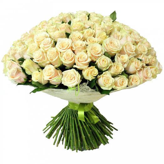 Роза талея 60 см, 101 шт