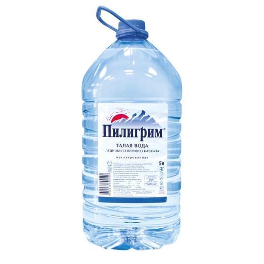 Питьевая вода Пилигрим 5 л. без газа (2 шт. в упаковке)