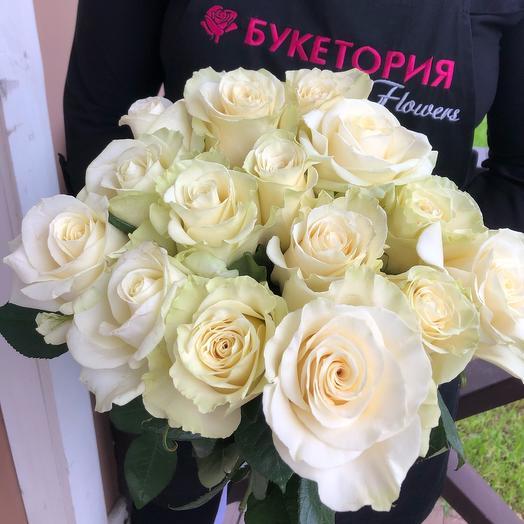 Роза Mondiale