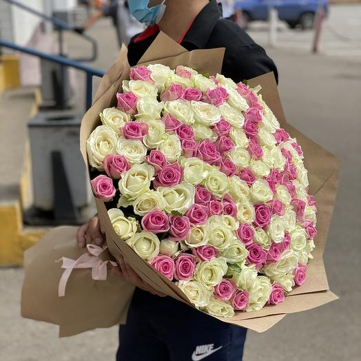 151 бело - розовая роза