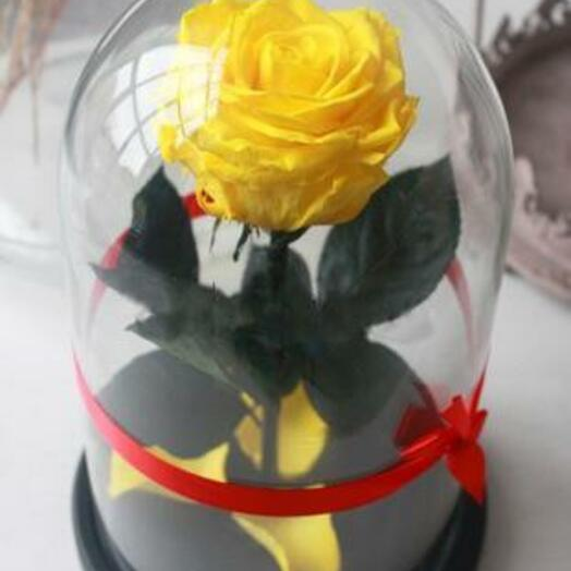 Роза в колбе Premium Жельая