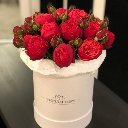 Коробка пионовидных роз Ред Пиано