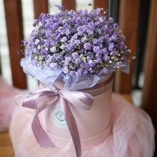 Коробка с фиолетовой гипсофилой