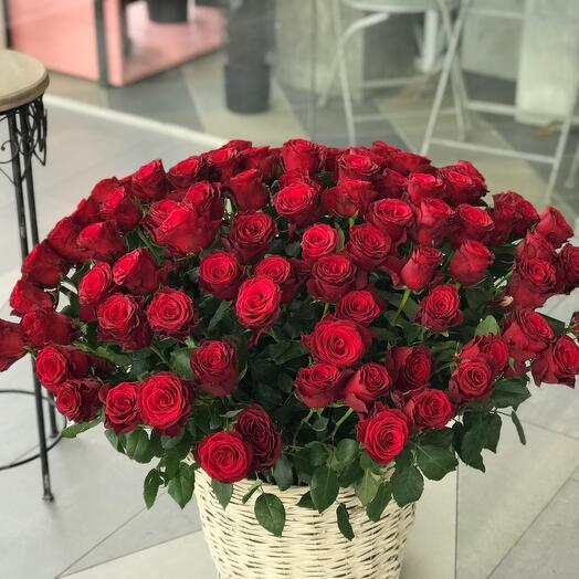 101 роза !!!АКЦИЯ !!Корзина с цветами 101 Роза «Родос»