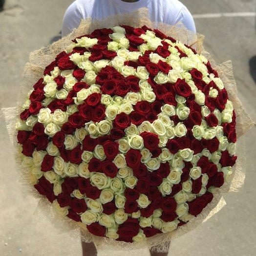 Букет из 301 красно-белой розы (70см) N27: букеты цветов на заказ Flowwow