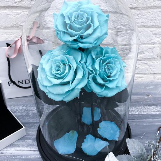 Роза в Колбе King Trio: букеты цветов на заказ Flowwow