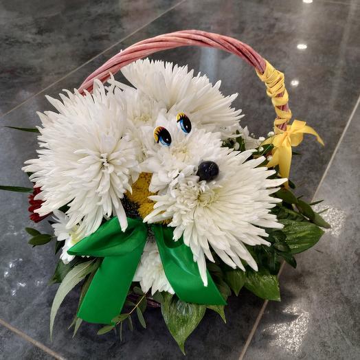 Забавный пёсик 🐶 в корзинке: букеты цветов на заказ Flowwow
