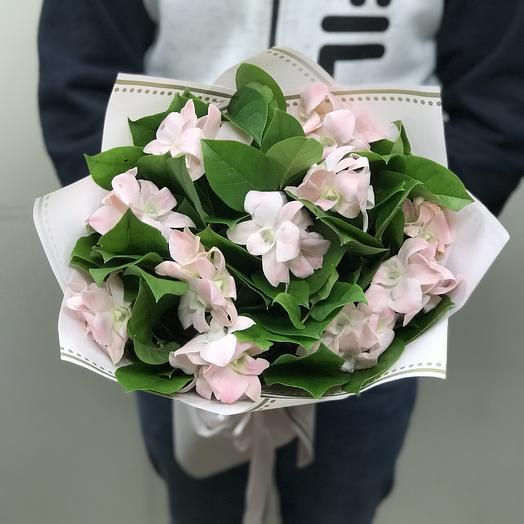 Розовые орхидеи в букете: букеты цветов на заказ Flowwow