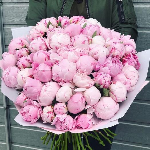 Пионы в дизайнерской упаковке 51 шт: букеты цветов на заказ Flowwow